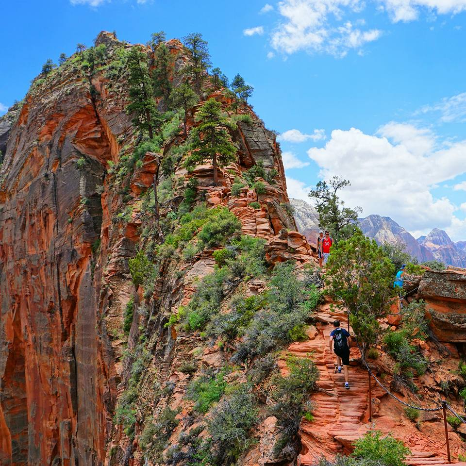 Hiking up Angel's Landing in Zion National Park