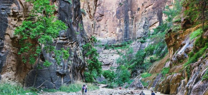 Hiking The Narrows In Zion National Park