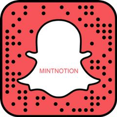 snapchat @mintnotion